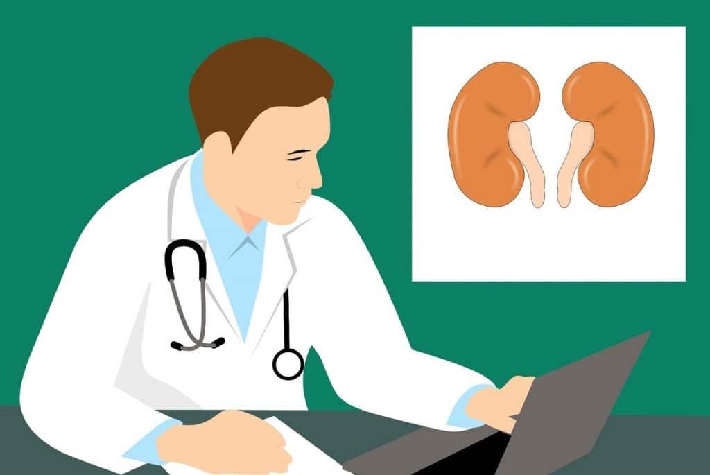 Kidney Disease Statistics - Facts