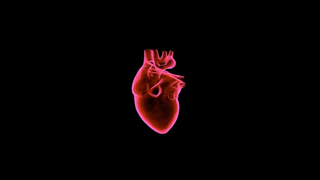 Organ Donation Statistics - Heart