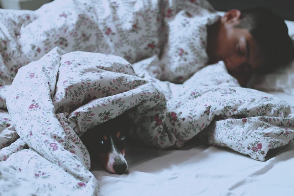 Benefits of Sleep - Tips