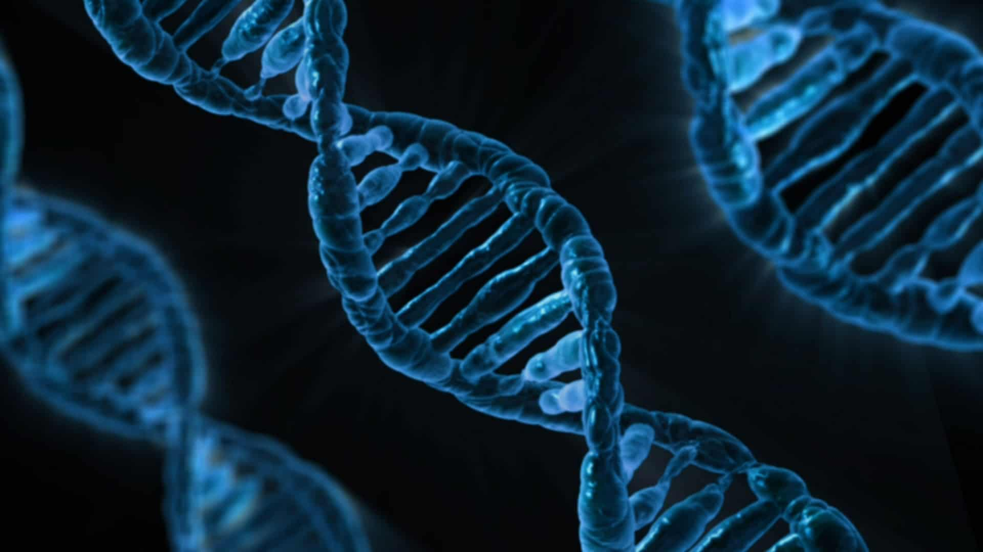 Best DNA Test Kits