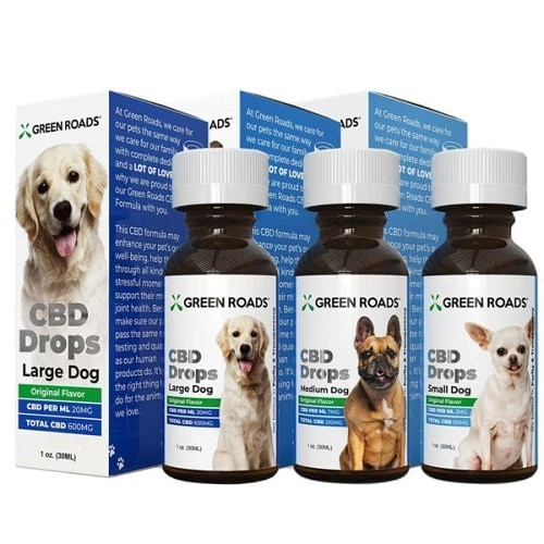 Best CBD Oil for Dogs - Green Roads Review