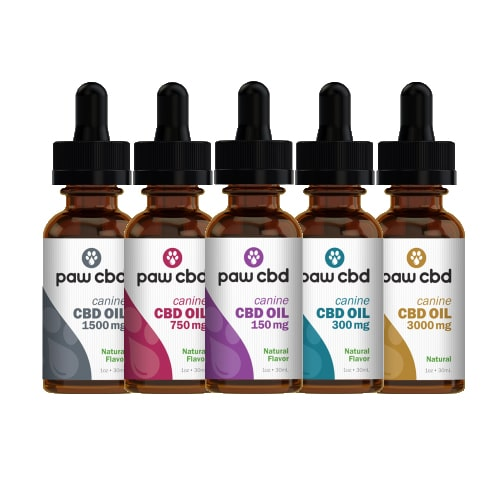 Best CBD Oil for Dogs - cbdMD Review