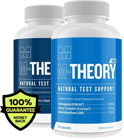M-Theory T Natural Test Support