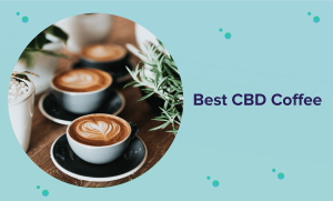 The Best CBD Coffee in 2020 (Reviews & Buyer's Guide)
