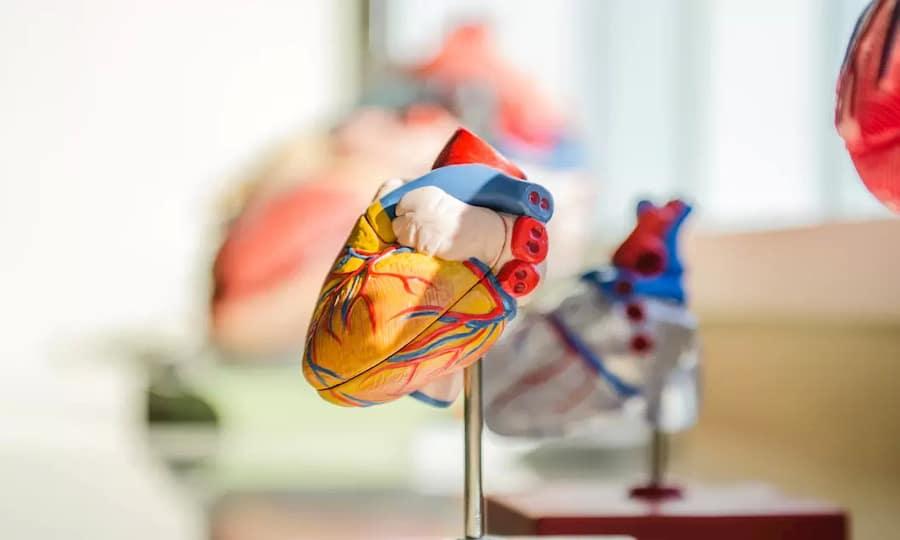 Heart Attack Statistics