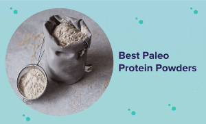 Best Paleo Protein Powder in 2021 (Reviews & Buyer's Guide)