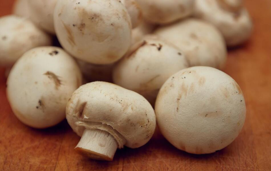 Higher Mushroom Intake Is Linked to a Lower Risk of Cancer