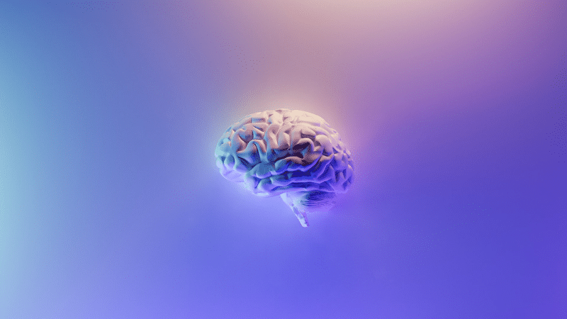 Magnetic Brain Stimulation Can be Used to Improve Memory